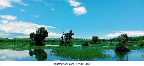Beautiful fishpond in the Philippines