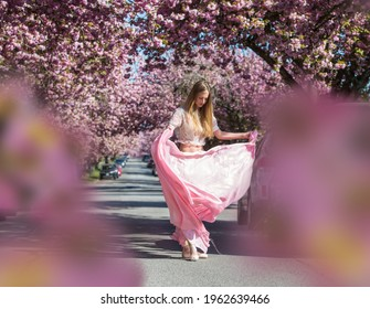 A beautiful fit Caucasian woman dancer with a pink dress and the pointy shoes in a cherry blossom