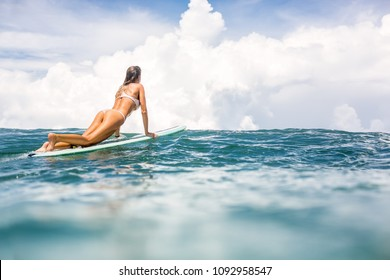 Beautiful fit young surfer girl in sexy pink bikini surfing longboard on big waves in open ocean. Modern family lifestyle, people water sport adventure camp and extreme swim on summer vacation.