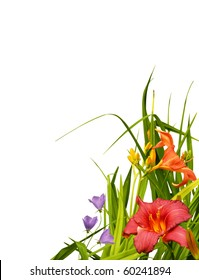 Beautiful floral border or corner. Capucines and lilies with natural leaves isolated on white background.