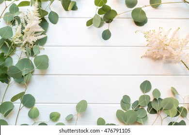 Beautiful floral border with  eucalyptus leaves on the white wooden background. Empty space for publicity information or advertising text.
