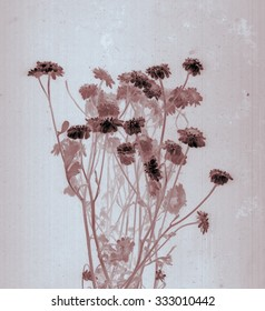 Beautiful floral prairie field bouquet. Daguerreotype. Film grain Botanical negative x-rays scan Canvas texture background Vintage conceptual old retro aged postcard Dark blue sepia brown soft color