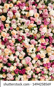 Beautiful floral wall with pink and white roses.