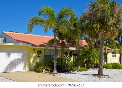 Beautiful Florida Ranch Style House with Palm Trees and Landscaping