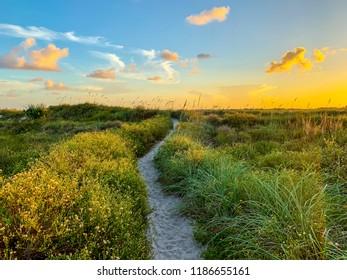 Beautiful Florida sunset landscape.