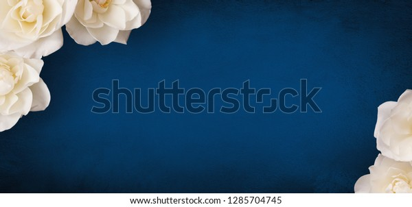 Beautiful Flower background with copy space for text. Decor of white roses flowers on grunge blue background. Wide Angle Template for design for mother's day, birthday, wedding