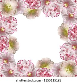 Beautiful flower background from a mallow and a hibiscus