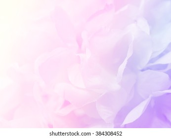 Flowers Background Design Images Stock Photos Vectors Shutterstock