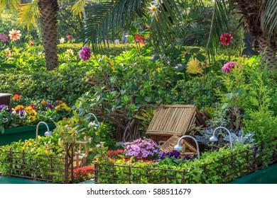 Beautiful Flower and Cactus Garden