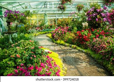 Beautiful Garden Images, Stock Photos \u0026 Vectors