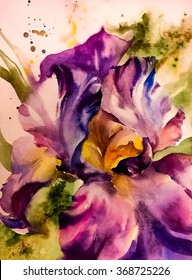 Beautiful flower iris - bright and colorful in cold tones. Watercolor on textured  paper - hand illustration.