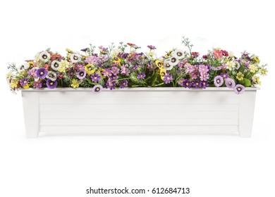 beautiful  flower  in plastic flowerpot