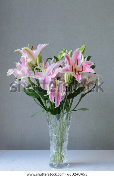 Shutterstock & Beautiful Flower Vase Simple Background Stock Photo (Edit Now) 680240455