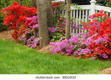 beautiful flowers against a white fence