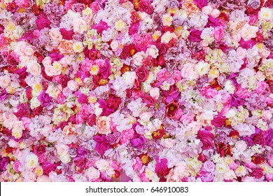 Floral Background Images Stock Photos Amp Vectors