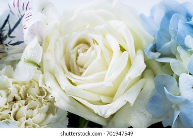 Beautiful flowers as a background.
