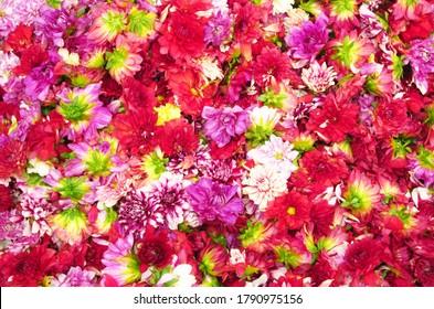Schöner floraler Hintergrund. Nahtlose Blumenmuster in Indien.