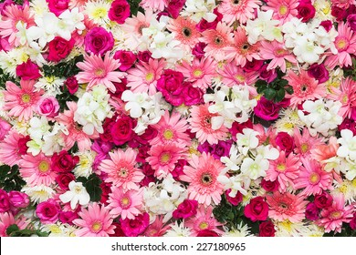 Flowers Background Images Stock Photos Amp Vectors