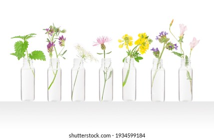 Beautiful flowers in bottles, natural medicine - BACH aromatherpy cocept.