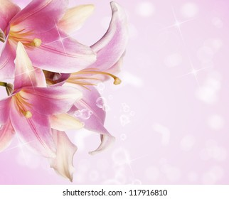 Beautiful flowers card.Pink lily