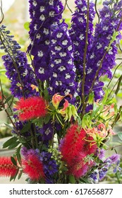 Beautiful flowers of delphinium plant show in vertical style.