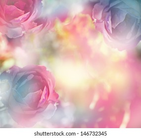 beautiful flowers made with color filters/romantic pink flowers background
