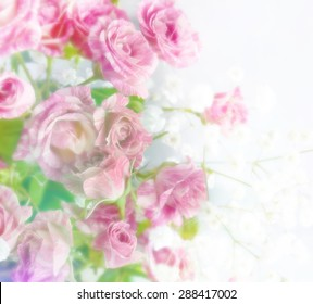 beautiful flowers made in soft style for background. Roses.  Blur style.