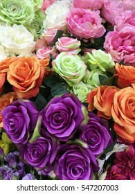 Beautiful flowers for New Year