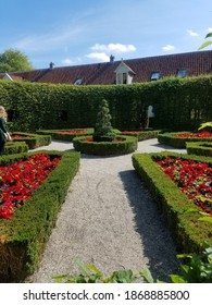 Beautiful flowers at Prinsentuin in Groningen