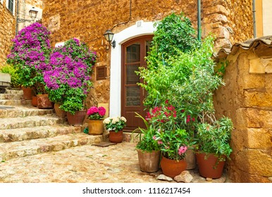 Beautiful flowers street in old village of Fornalutx on Mallorca island, Spain