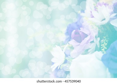 Beautiful flowers in sweet colors soft blur on bokeh background