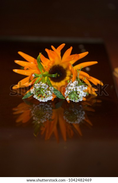 beautiful flowers and their reflection in a dark mirror