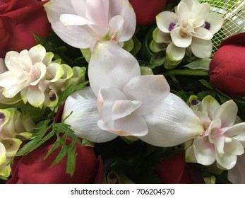 Beautiful flowers are used for making the ground or you are satisfied.