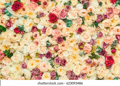 Beautiful flowers wall background and beautiful closeup.