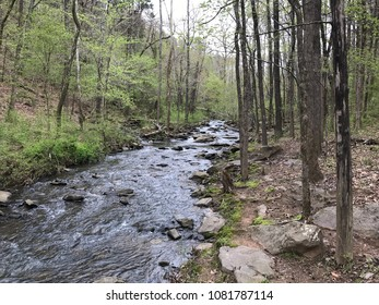 Beautiful flowing stream in Arkansas on the Lake Alma Trail.  Clear water and new spring leaves on the trees.