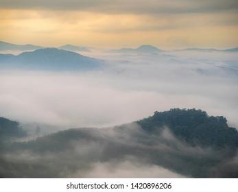 Beautiful fog in the morning