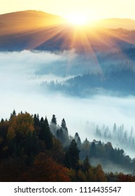 beautiful foggy autumn sunrise in mountains, picturesque scenic scenery, mist on valley in first rays sun, Europe scene, Ukraine, wallpaper vertical landscape background