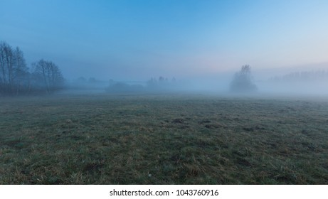 Beautiful foggy morning on polish meadow. Rural spring landscape.