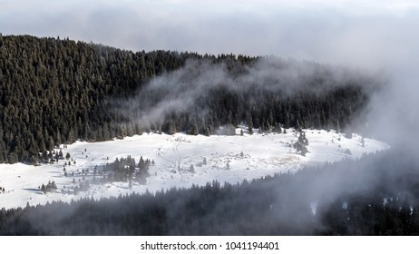 Beautiful foggy morning on a sunny day of winter on top of Hasmas mountains in Romania.