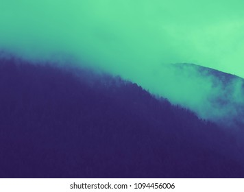 beautiful foggy mystic mountains. Fog clouds at the pine tree mystical woods, morning. Europe, mysterious alpine landscape.