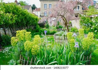 Beautiful Foliage in Auvers on the Oise France