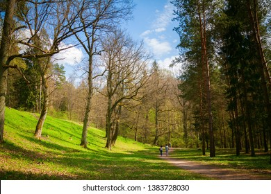 beautiful footpath in the Puckoriu Park in Vilnius in spring, Lithuania