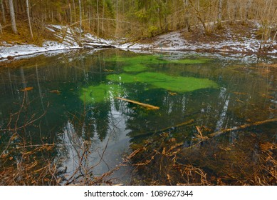 Beautiful forest geyser lake with clear turquoise water and stains on the bottom in a forest
