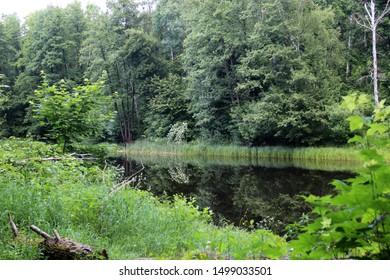 Imágenes Fotos De Stock Y Vectores Sobre Beautiful Lake