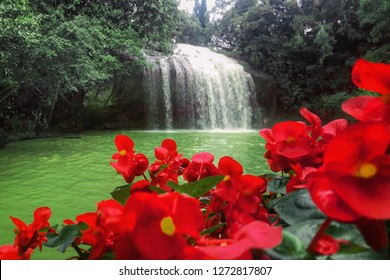 Beautiful forest waterfall and emerald lake with bright red flower on the foreground. Asia, Vietnamese mountains. Prenn waterfall.