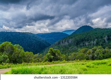 Beautiful forested mountain ranges