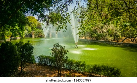 A beautiful fountain in a green water pond surrounded by intense green tall trees, bushes, and plants in the famous touristic Lodi Gardens or Lodhi Gardens is a city park situated in New Delhi, India.