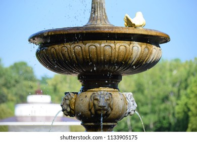 A beautiful fountain with lions and white pigeons. Morshyn, Ukraine.