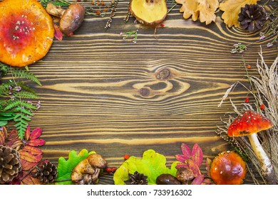 Beautiful frame of natural materials, mushrooms, cones, autumn leaves, fly agarics, berries. Autumn brown wooden background.