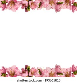 Beautiful frame with peach flowers